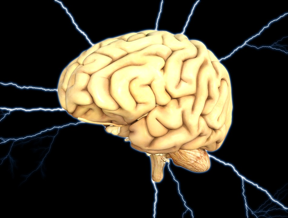 Brain Imaging Reveals Adhd As >> Brain Imaging Reveals Adhd As A Collection Of Different Disorders Adhd