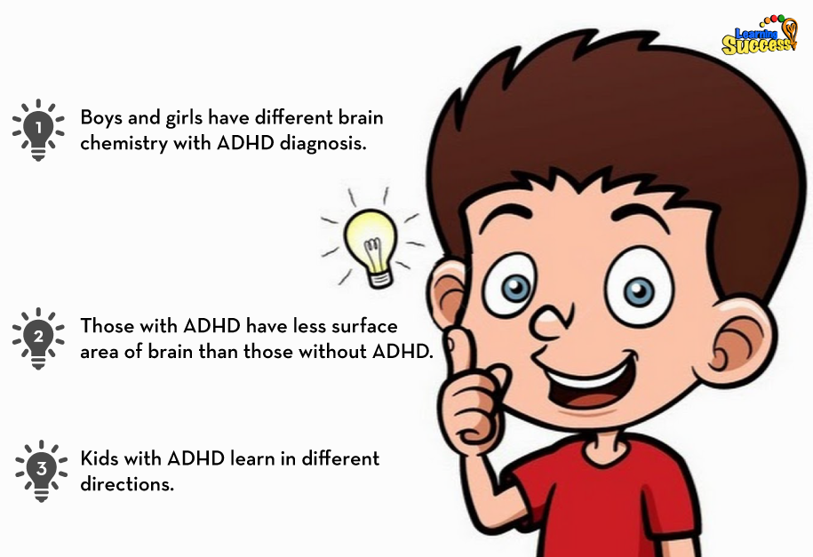 Brain Differences In Adhd >> Gender Based Brain Differences In Kids With Adhd