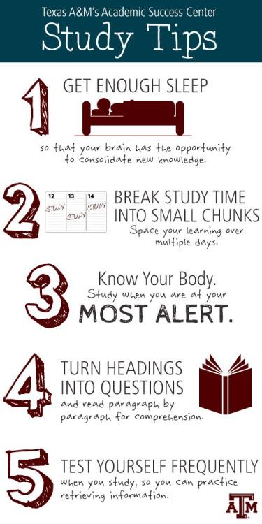 helpful study tips  infograph