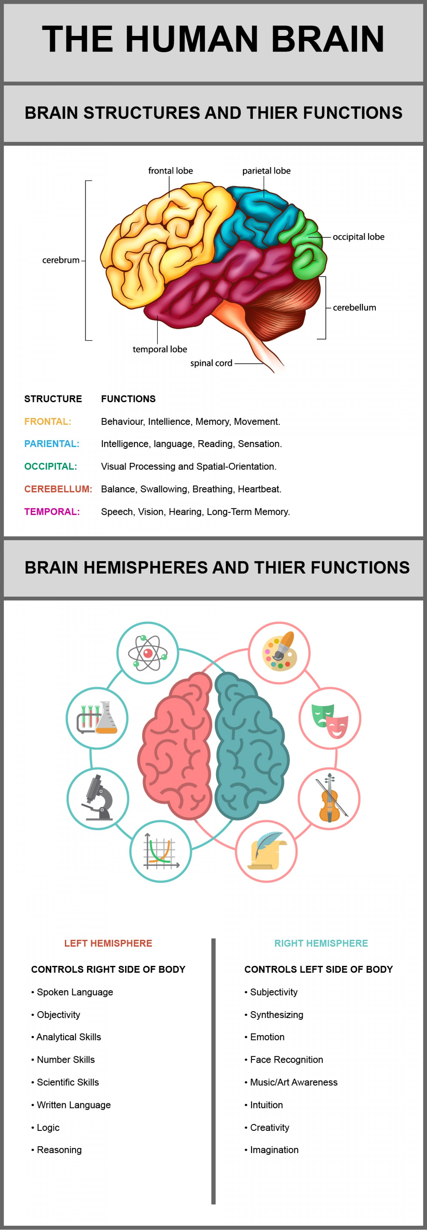 The Human Brain Its Structures and Their Functions ...